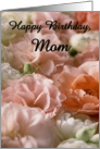 Happy Birthday - Mom