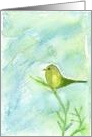 Song Bird Art Green and Yellow Watercolor Painting
