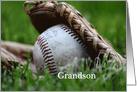 Grandson, baseball in glove