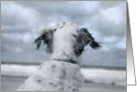 Dog meets hurricane isabel on the beach card