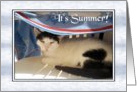 Seasons - Summer, Cat In Towel Shadow card