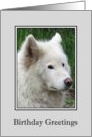 Birthday - White Wolf card