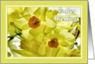Easter - Narcissi card
