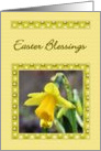 Easter - Daffodil card