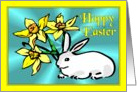 Easter - Daffodils & Rabbit card