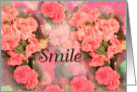 Smile, Pink Bloom, Blank note card
