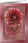 Fondest Thoughts, pink Dahlias card