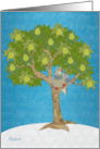 One Partridge In a Pear Tree card