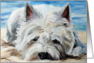 Westie West Highland Terrier Dog -Beach Bum card