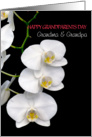grandparents day for grandma grandpa white orchids card