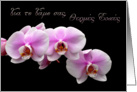 wedding Congratulations Greek pink orchids card