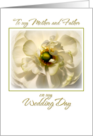 to mother father on my wedding day, anemone card