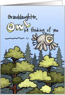 Granddaughter - Thinking of you at summer camp - Owl card