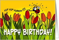 Happy Birthday tulips - hip hip hurray card