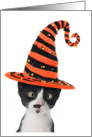 Kitty Cat Witch Happy Halloween Card