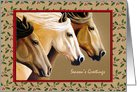 Horse Trio Christmas Cards