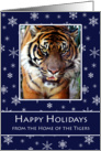 Tiger Christmas Cards Fpr Schools From the Home of the Tigers card