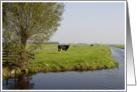 Dutch scenery Greeting Card