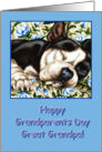 Great Grandpa Happy Grandparents Day, Sleeping Boston Terrier card