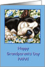 Papa Happy Grandparents Day, Sleeping Boston Terrier card
