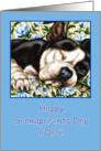 Pops Happy Grandparents Day, Sleeping Boston Terrier card