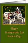 Nana & Papa Happy Grandparents Day, Dalmatian dogs card