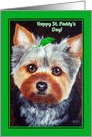 Happy St. Patrick's Day ~ Yorkshire Terrier Dog card