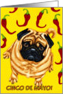 Cinco de Mayo - Pug Dog Chili Peppers card