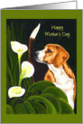 Mother's Day - Beagle Lily Flowers card