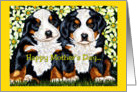 Mother's Day - Twin Puppies Bernese Mountain Dogs Flowers card