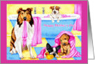 Mother's Day - Dogs in Bathtub card