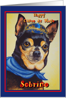 Sobrino Nephew Happy Cinco de Mayo, Chihuahua with sombrero card