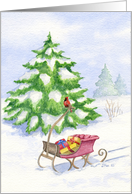 Christmas Sleigh card