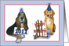 Graduation Party - Two Dogs card