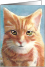 Orange Tabby Cat Painting - Blank Any Occasion card