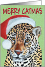 Leopard Jaguar Merry Catmas Card