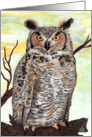 Great Horned Owl Art - All occasion card