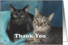 Pet Sitter Thank You Cats Painting card
