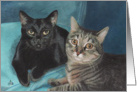 Black Cat and Tabby Cat Painting card