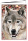 Wolf Portrait Painting Frameable all occasion note card