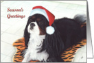 Cavalier King Charles Dog Season's Greetings Christmas card