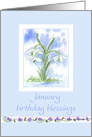 January Birthday Blessings White Snowdrops Flower Watercolor card