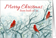 Merry Christmas From Both of Us Cardinal Birds Winter Trees card