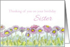 Thinking of You on Your Birthday Sister English Daisies card