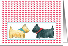 Scottie Dogs Blank Note Card Red Hearts Watercolor card
