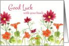 Good Luck With Your Finals Orange Nasturtium Flowers card