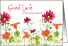 Good Luck With Your Move Orange Nasturtium Flowers card