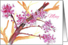 Happy May Day Pink Flower Blossoms Watercolor card