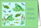 Hello From Camp Frogs Turtles Butterflies Fish Watercolor Art card