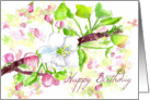 Happy Birthday Spring Apple Blossoms Botanical Illustration card